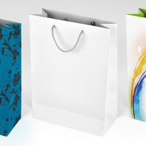 gift_bag_mock_up_by_jasterm-d6objh3